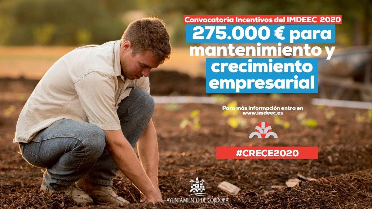 Publicadas las bases de la Convocatoria de Incentivos del IMDEEC al mantenimiento y crecimiento empresarial 'Crece2020'